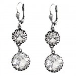Encased Swarovski Crystal Drop Earrings